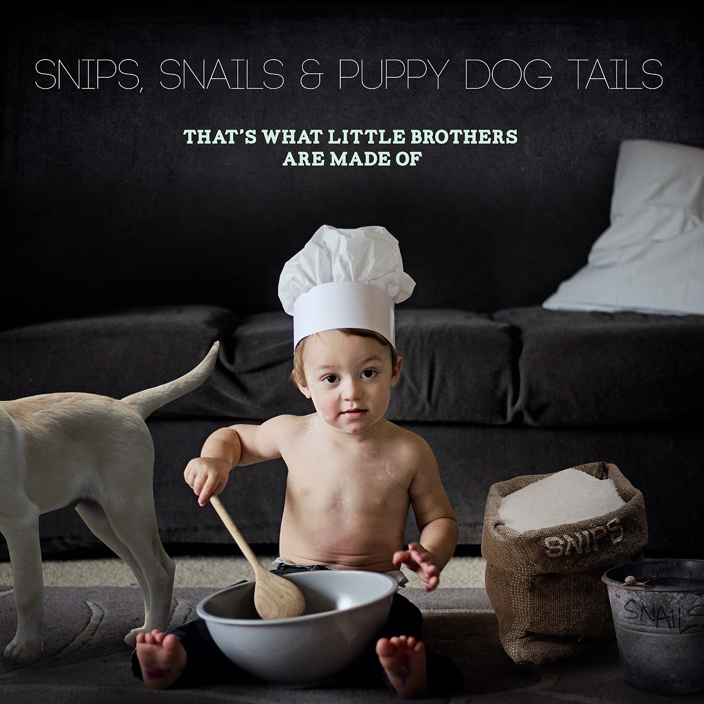 Baby gender announcement photo - snips and snails and puppy dog tails