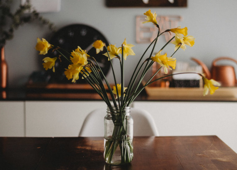 unkempt daffodils in a jar on a dining table in the morning sunlight